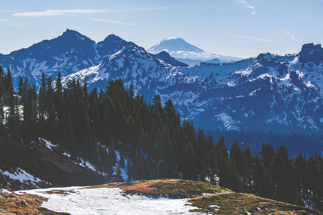 Photos: From Paradise in Mount Rainier National Park