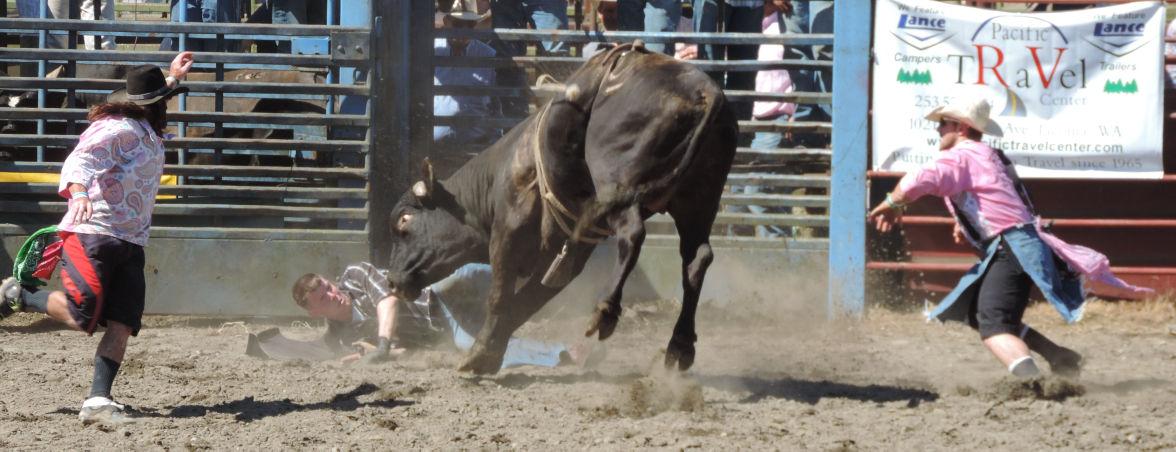 Roy Pioneer Rodeo