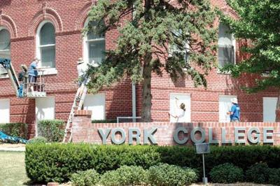 York College alumni and friends come to work