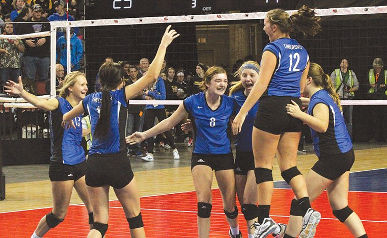 t wolves and cardinals to battle for d2 volleyball title york news times news. Black Bedroom Furniture Sets. Home Design Ideas