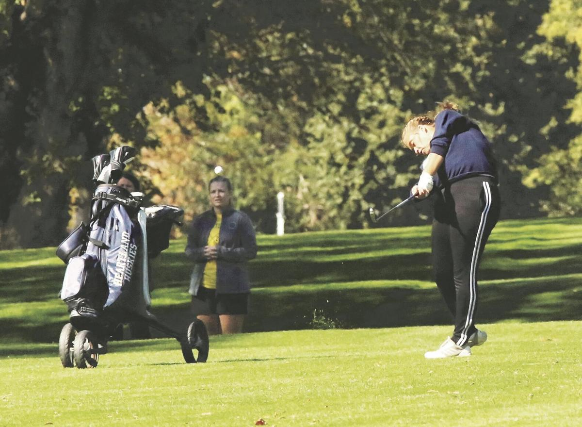 Mestl in the thick of it at Class C state golf