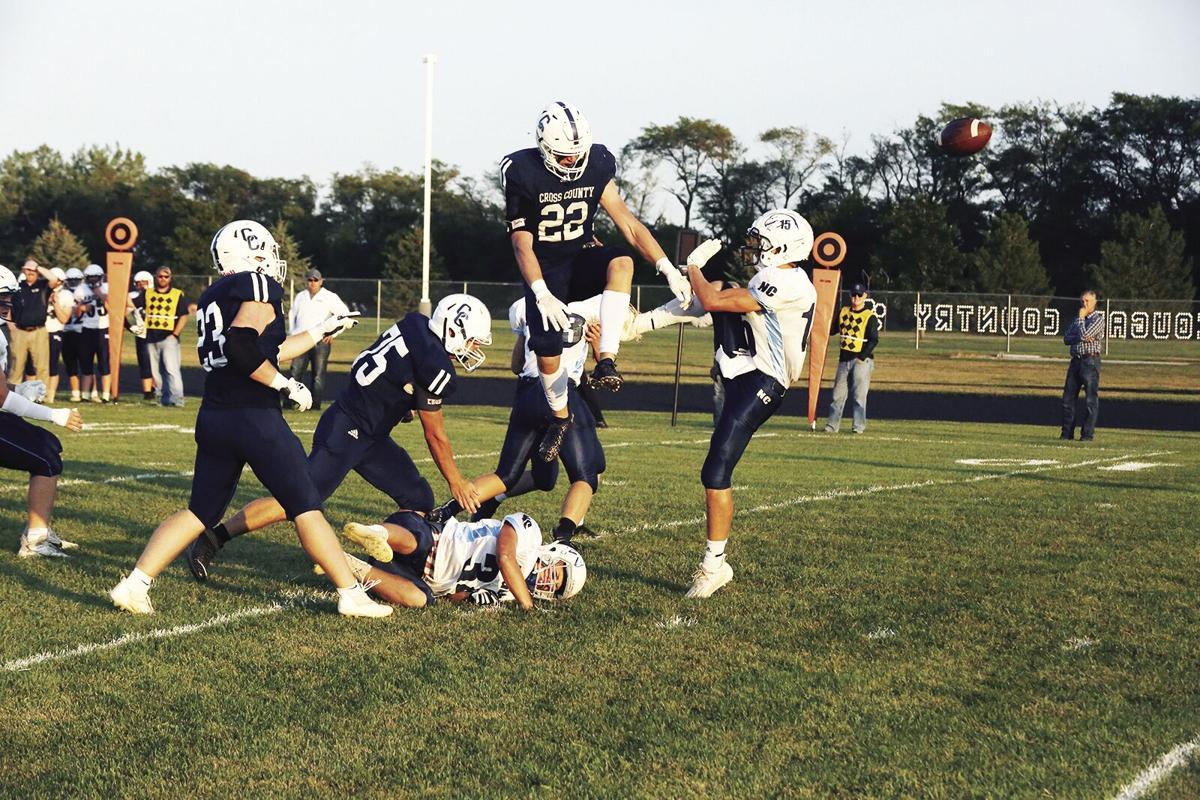 Hollinger swats down an Eagle punt