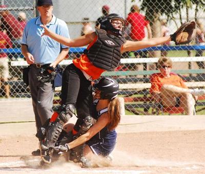 York area softball teams have banner seasons | Sports