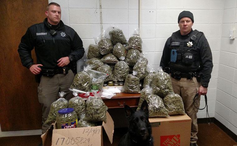 Marijuana Bust