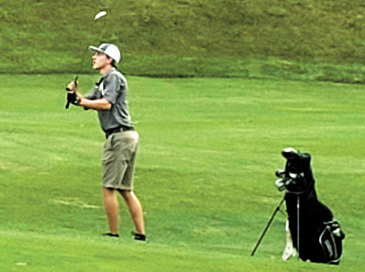 Comets golfers win district round